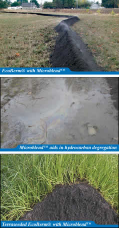 EcoBerm with Microblend / Microblend aids in hydrocarbon degregation / Terraseeded EcoBerm with Microblend