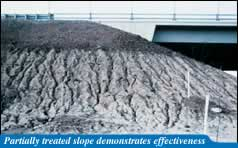 Partially treated slope demonstrates effectiveness