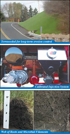 Terraseeded for long-term erosion control / Calibrated Injected System / Web of Roots and Microbial Filaments